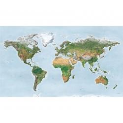 Surftrip Map Green Edition